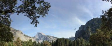 Halve Koepel in horizon bij het Nationale Park van Yosemite stock afbeelding