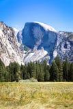 Halve Koepel van Yosemite-Vallei in de Zomer stock afbeeldingen