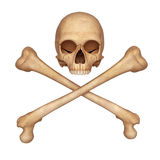 Halve schedel met beenderen Stock Afbeelding