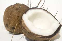 Halved coconut shell Stock Image