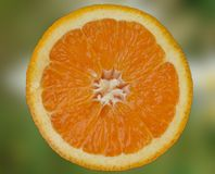 Halved fresh orange Royalty Free Stock Image