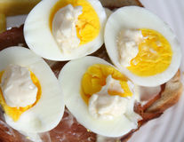 Halved egg yolks with mayonnaise Stock Image