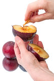Halved plum in hand Royalty Free Stock Photography