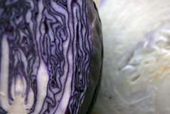 Halved red cabbage lying on top of the white cabbage Stock Images