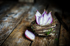 Halved red onions in a basket Stock Photography