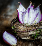 Halved red onions in a basket Royalty Free Stock Photography