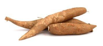 halved yuca корня Стоковая Фотография RF