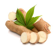 Halved Yuca Root royalty free stock images