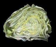 Halverat grönt huvud av grönsallat royaltyfri fotografi