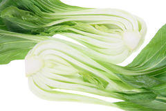 Halves of Bok Choy Stock Photography