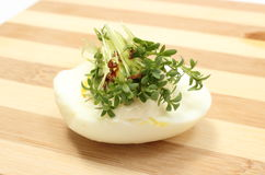 Halves of egg and fresh cress Stock Photos