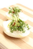 Halves of egg with mayonnaise and fresh cress Royalty Free Stock Image