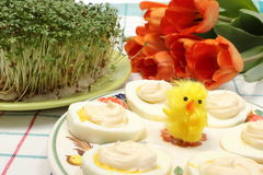 Halves of eggs with mayonnaise and Easter decoration Royalty Free Stock Image