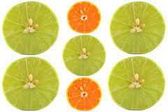 Halves of lime and orange Stock Image