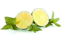 Halves of limes on mint leaves Stock Images