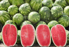 Halves of watermelon. The watermelon fruit has a smooth exterior green and yellow cover with juicy sweet interior pink and orange flesh Royalty Free Stock Image