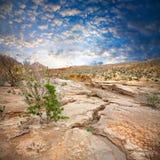 halvt ökenlandskap Arkivbilder