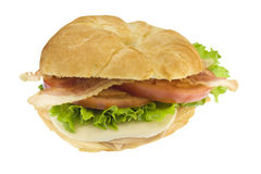 Ham and cheese BLT croissant Royalty Free Stock Photo