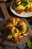 Ham and Cheese Egg Breakfast Sandwich Royalty Free Stock Photo