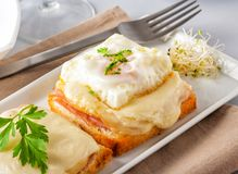 Ham and cheese sandwich served on a tray. Ham and cheese sandwich with fried egg on top. Garnished with sprouts and parsley Royalty Free Stock Photos