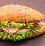 Ham Cheese Sandwich Indicates Bread-Rolle und gebacken stockbild