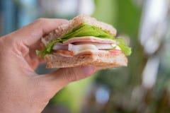Ham Cheese smörgås fotografering för bildbyråer