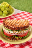 Ham and egg picnic sandwich on summer outdoor table Royalty Free Stock Photos