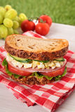 Ham and egg picnic sandwich on summer outdoor table. Ham and egg picnic sandwich on outdoor table Stock Photo