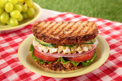 Ham and egg picnic sandwich on summer outdoor table Royalty Free Stock Image