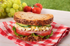Ham and egg picnic sandwich on summer outdoor table. Ham and egg picnic sandwich on outdoor table Royalty Free Stock Photos