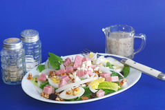 Ham and Egg Salad Stock Images