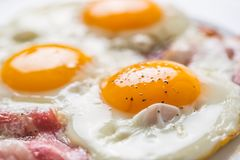 Ham and Eggs. Bacon and Eggs. Salted egg with pepper on white pl Royalty Free Stock Photography