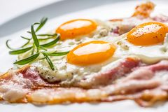Ham and Eggs. Bacon and Eggs. Salted egg with pepper on white pl. Ate. English breakfast Stock Images