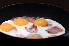 Ham and eggs fried Stock Photos