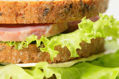 Ham and lettuce Royalty Free Stock Image