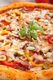 Ham, mushroom and vegetable pizza Royalty Free Stock Photo