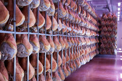 Ham prosciutto di parma Stock Images