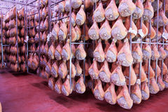 Ham prosciutto di parma. Parma ham product typical Emilian royalty free stock image