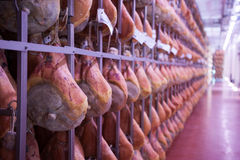 Ham prosciutto di parma Royalty Free Stock Photos