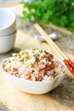 Ham and rice royalty free stock images