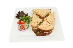 Ham Salad Sandwich Stock Afbeeldingen