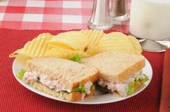 Ham salad sandwich with chips Stock Images