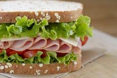 Ham Sandwich Royaltyfri Fotografi