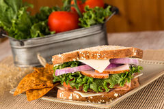 Ham Turkey Swiss Cheese Onions-Lunchsandwich Royalty-vrije Stock Foto