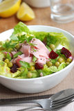 Ham and vegetable salad Stock Photography