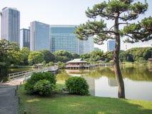 Hama Rikyu Garden hermoso, Tokio, Japón imagen de archivo libre de regalías