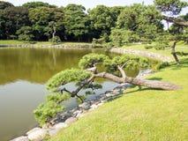 Hama Rikyu Garden hermoso, Tokio, Japón fotografía de archivo libre de regalías