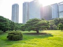 Hama Rikyu Garden hermoso, Tokio, Japón fotografía de archivo