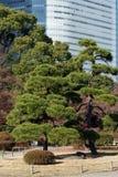 Hama Rikyu Garden, Tokyo Royalty Free Stock Image