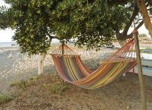 Hamac coloré près d'un arbre Photos stock